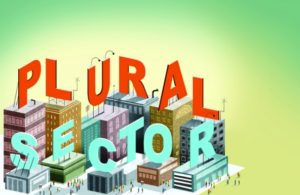 plural-sector